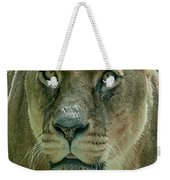 Lioness Female Lion 2 Weekender Tote Bag