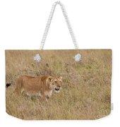Lioness, Kenya Weekender Tote Bag