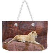 Lioness On A Red Rock Weekender Tote Bag