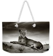 Lioness On Desert Dune Weekender Tote Bag by Johan Swanepoel