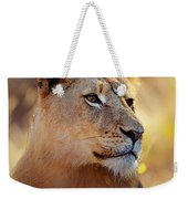 Lioness Portrait Lying In Grass Weekender Tote Bag