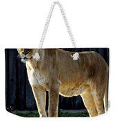 Lioness Weekender Tote Bag by Frozen in Time Fine Art Photography