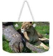 Lioness2 Weekender Tote Bag
