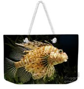 Lionfish Searching For Its Prey Weekender Tote Bag