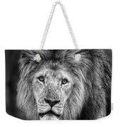 Lion's Eyes Weekender Tote Bag