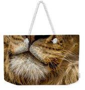 Lions Mouth 2 Weekender Tote Bag