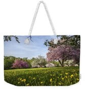 Lions Of The Lawn Weekender Tote Bag