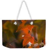 Liquidambar Autumn Weekender Tote Bag