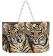 Little Angels Bengal Tigers Endangered Wildlife Rescue Weekender Tote Bag
