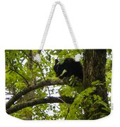 Little Bear Cub In Tree Cades Cove Weekender Tote Bag