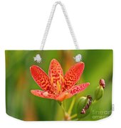 Little Blackberry Lilly Weekender Tote Bag