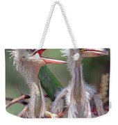 Little Blue Heron Egretta Caerulea Weekender Tote Bag