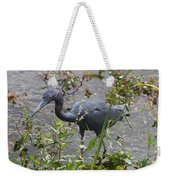 Little Blue Heron - Waiting For Prey Weekender Tote Bag