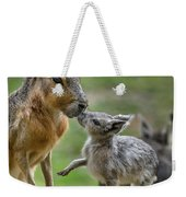 Little Cavy With Mother Weekender Tote Bag