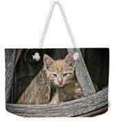 Little Charlie - Kitten By Wagon Wheel - Casper Wyoming Weekender Tote Bag
