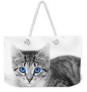 Little Cute Kitten. Space For Your Text Weekender Tote Bag