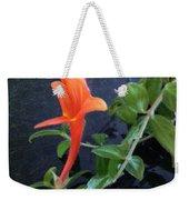 Little Dancing Dolphin Plant Weekender Tote Bag