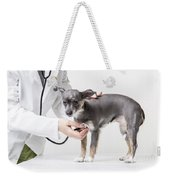Little Dog At The Vet Weekender Tote Bag