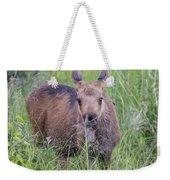 Little Feeder Weekender Tote Bag