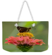 Little Glassywing Skipper Butterfly Weekender Tote Bag
