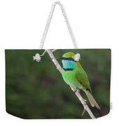 Little Green Bee-eater  Merops Orientalis Weekender Tote Bag