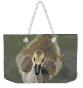 Little Guy Weekender Tote Bag