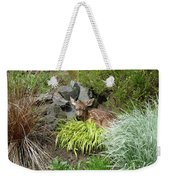 Little Lord Fawnleroy Weekender Tote Bag