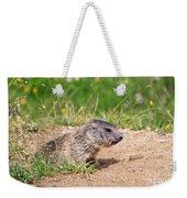 Little Marmot Weekender Tote Bag
