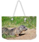 Little Marmots Weekender Tote Bag
