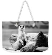 Little Meerkat Weekender Tote Bag