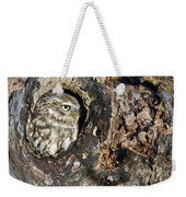 Little Owl 4 Weekender Tote Bag