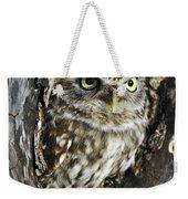Little Owl 6 Weekender Tote Bag