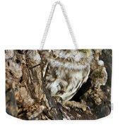 Little Owl In Hollow Tree Weekender Tote Bag