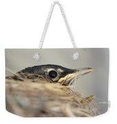 Little Robin Weekender Tote Bag