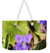 Little Shine Weekender Tote Bag