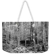 Little Trail Weekender Tote Bag