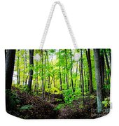 Little Valley 3 Weekender Tote Bag