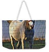 Little White Pony Weekender Tote Bag