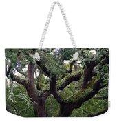 Live Oak Tree Weekender Tote Bag
