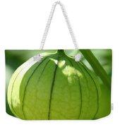 Living Lantern Weekender Tote Bag
