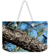 Lizard Bathing In The Sunshine Weekender Tote Bag