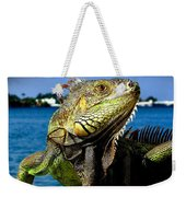 Lizard Sunbathing In Miami Weekender Tote Bag