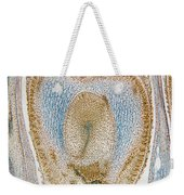 Lm Of Sunflower Ovule Weekender Tote Bag