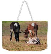 Lmao  Mules And Zebra - Featured In Wildlife Group Weekender Tote Bag