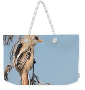 ln06 Bearded Reedling Juvenile Weekender Tote Bag