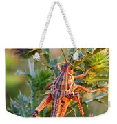Locust And Thistle 2am-110423 Weekender Tote Bag