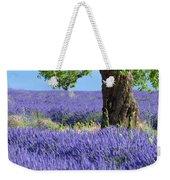 Lone Tree In Lavender Weekender Tote Bag