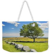 Lone Tree With Blue Sky In Blueberry Field Maine Weekender Tote Bag