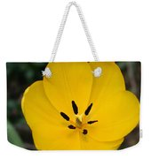Lone Yellow Tulip Weekender Tote Bag