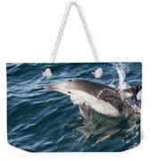 Long-beaked Common Dolphin Porpoising Weekender Tote Bag